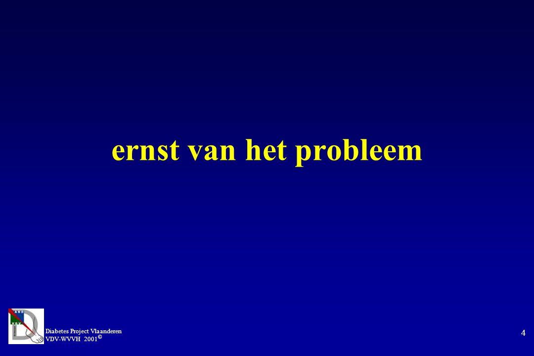 ernst van het probleem Diabetes Project Vlaanderen VDV-WVVH 2001©
