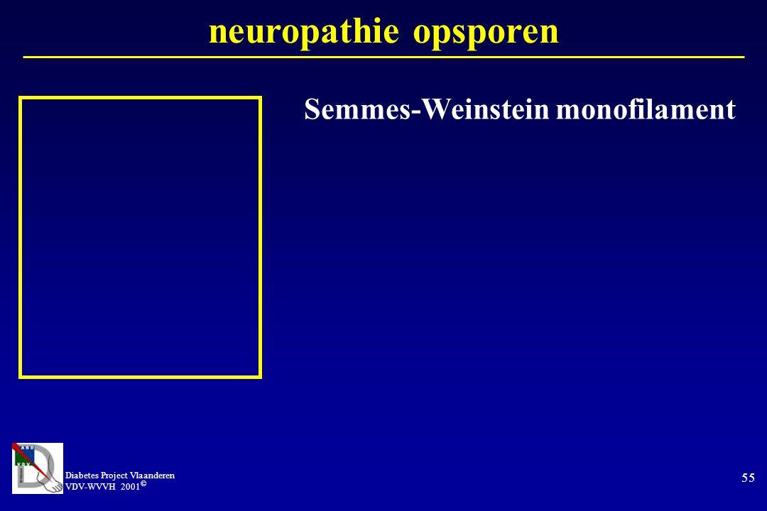 Semmes-Weinstein monofilament