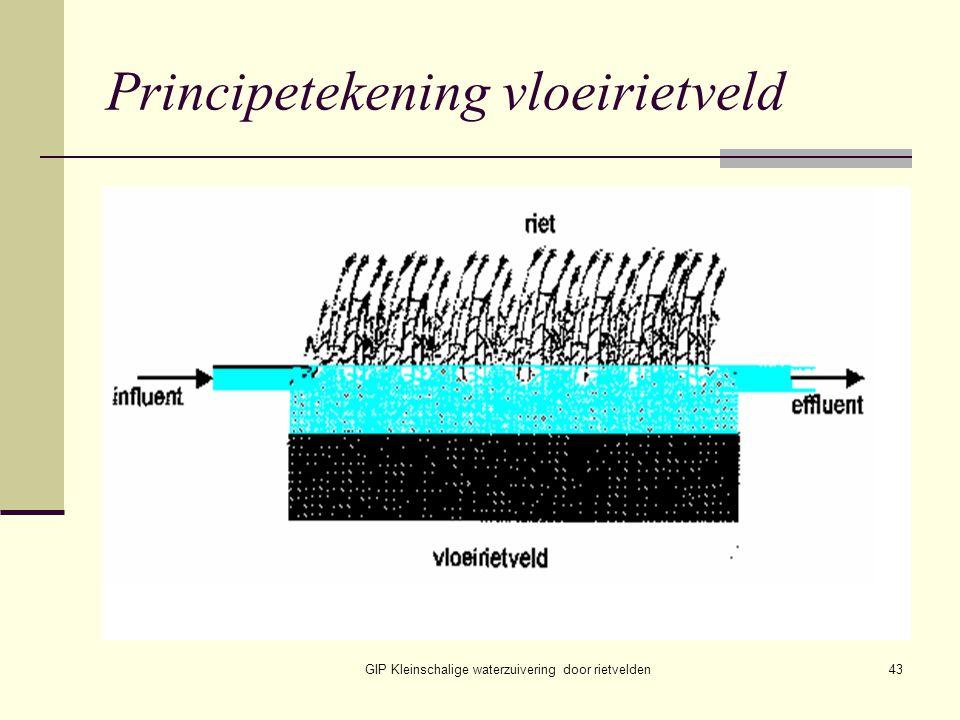 Principetekening vloeirietveld