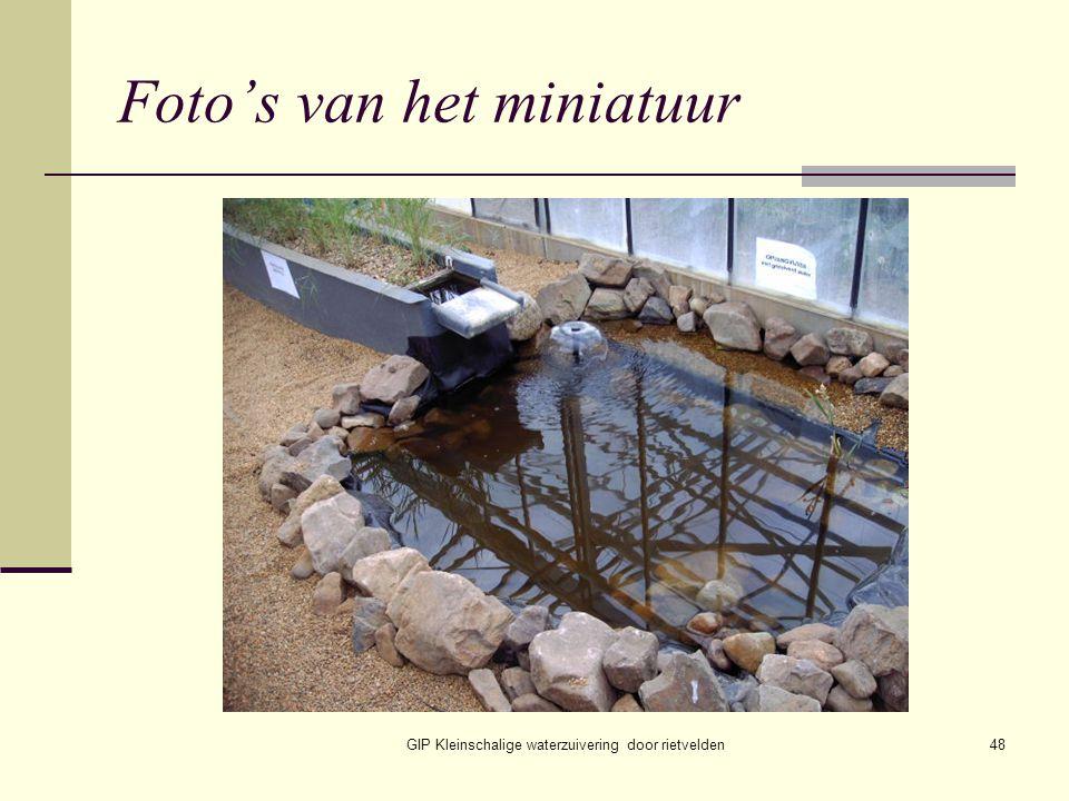 Foto's van het miniatuur