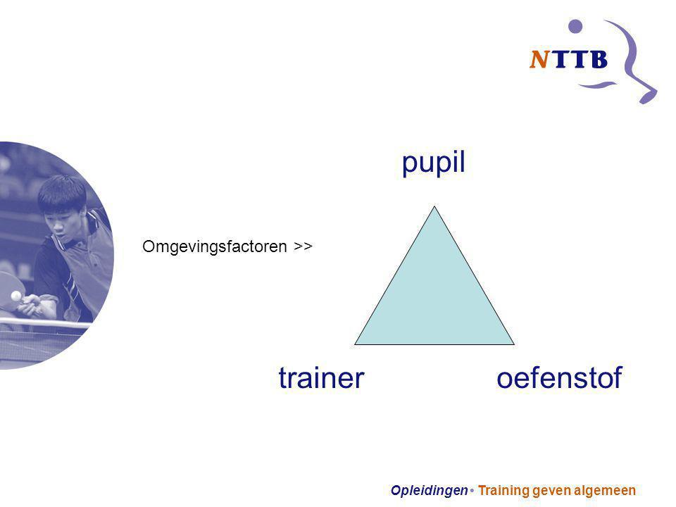 pupil trainer oefenstof Omgevingsfactoren >>