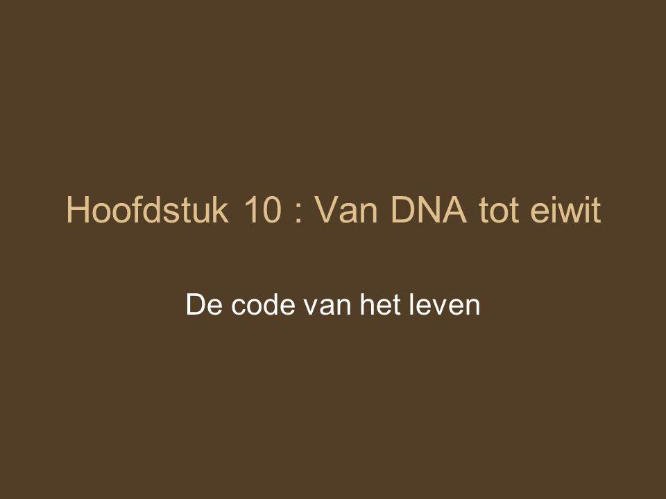 Hoofdstuk 10 : Van DNA tot eiwit