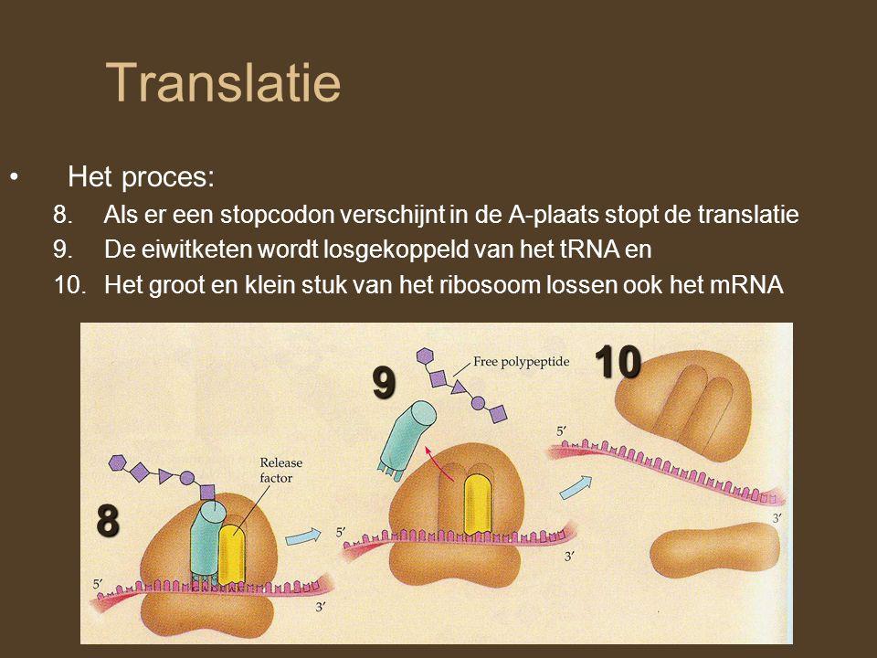 Translatie 10 9 8 Het proces: