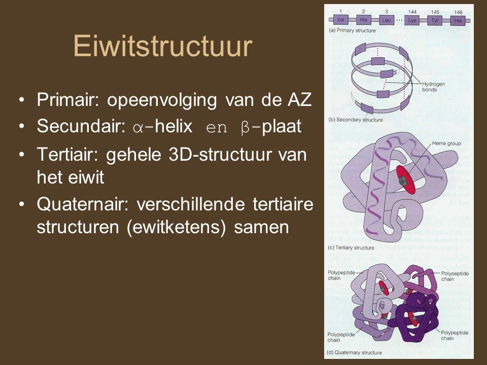 Eiwitstructuur Primair: opeenvolging van de AZ