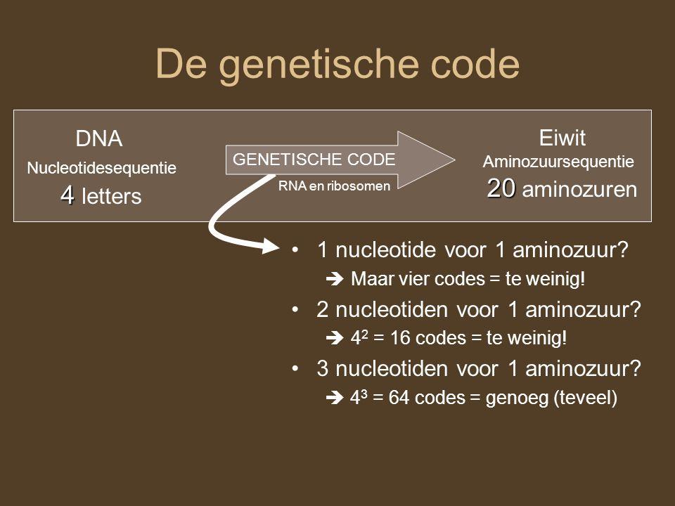 De genetische code 20 aminozuren 4 letters DNA Eiwit