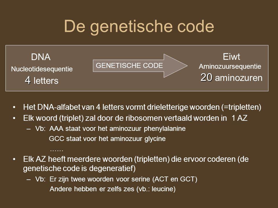 De genetische code 20 aminozuren 4 letters DNA Eiwt