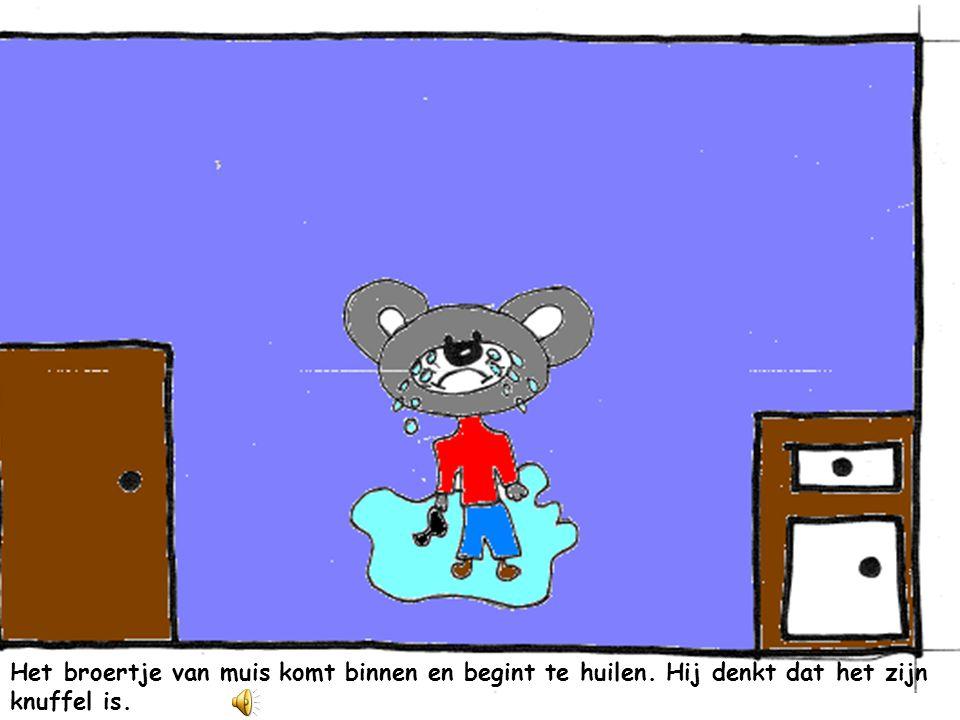 Het broertje van muis komt binnen en begint te huilen