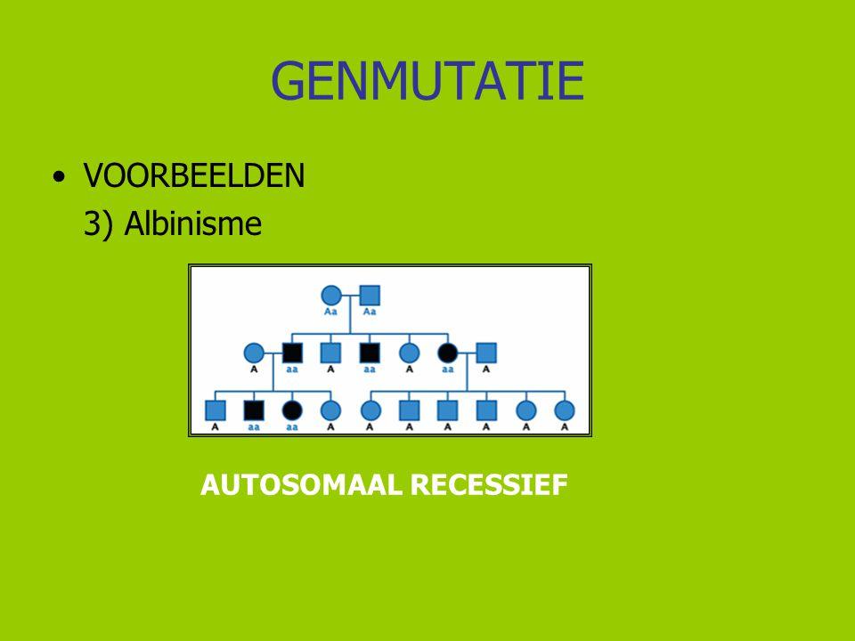 GENMUTATIE VOORBEELDEN 3) Albinisme AUTOSOMAAL RECESSIEF
