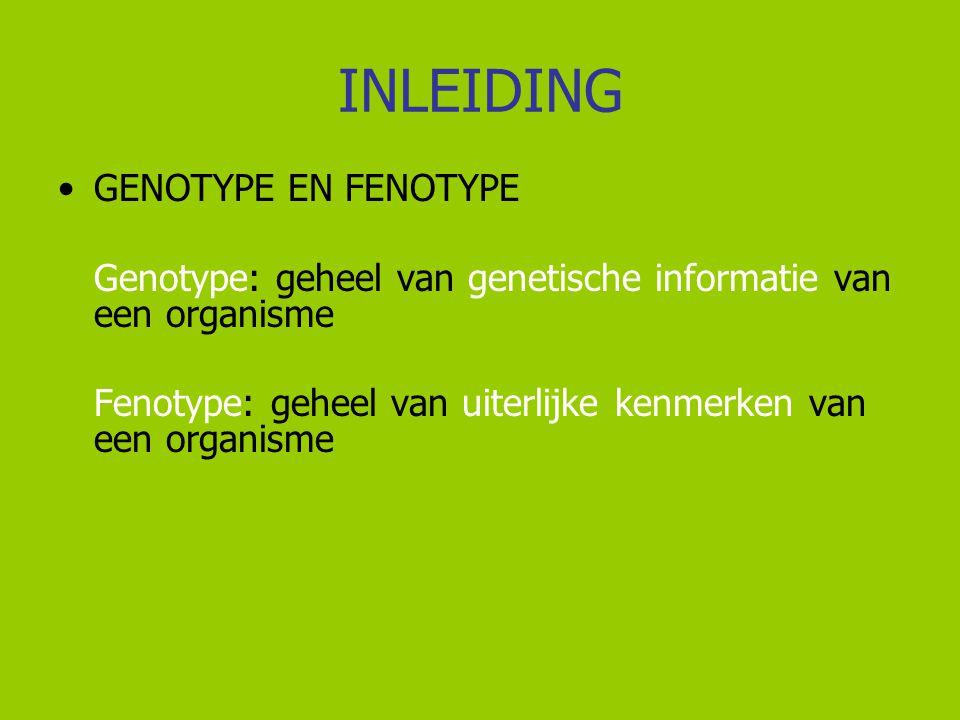 INLEIDING GENOTYPE EN FENOTYPE