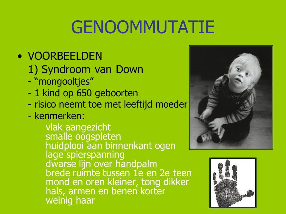 GENOOMMUTATIE VOORBEELDEN 1) Syndroom van Down - mongooltjes