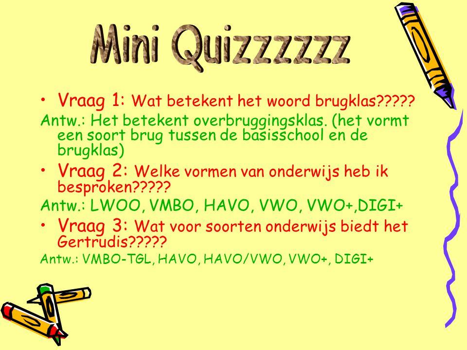 Mini Quizzzzzz Vraag 1: Wat betekent het woord brugklas