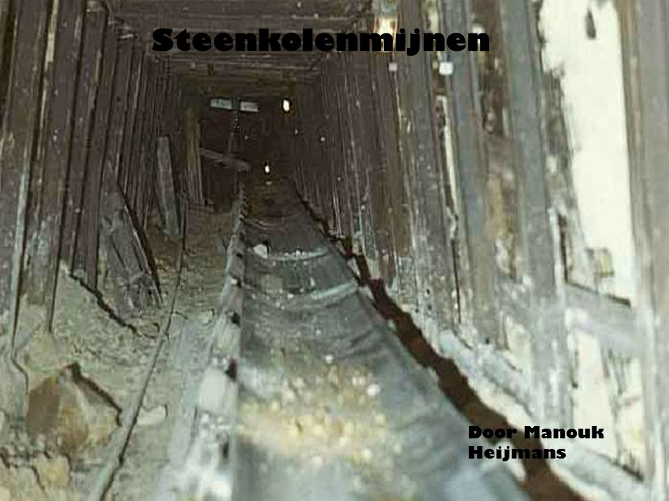 Steenkolenmijnen Door Manouk Heijmans