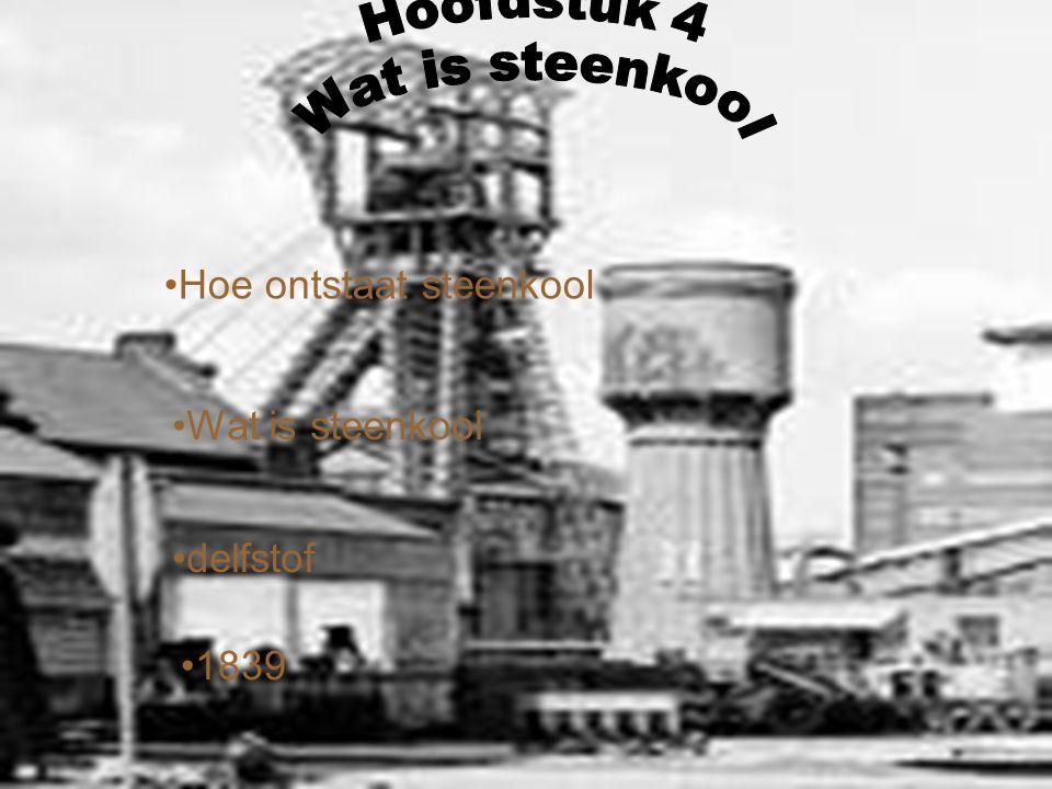 Hoofdstuk 4 Wat is steenkool Hoe ontstaat steenkool Wat is steenkool