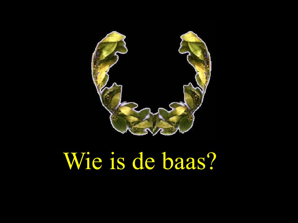 Wie is de baas