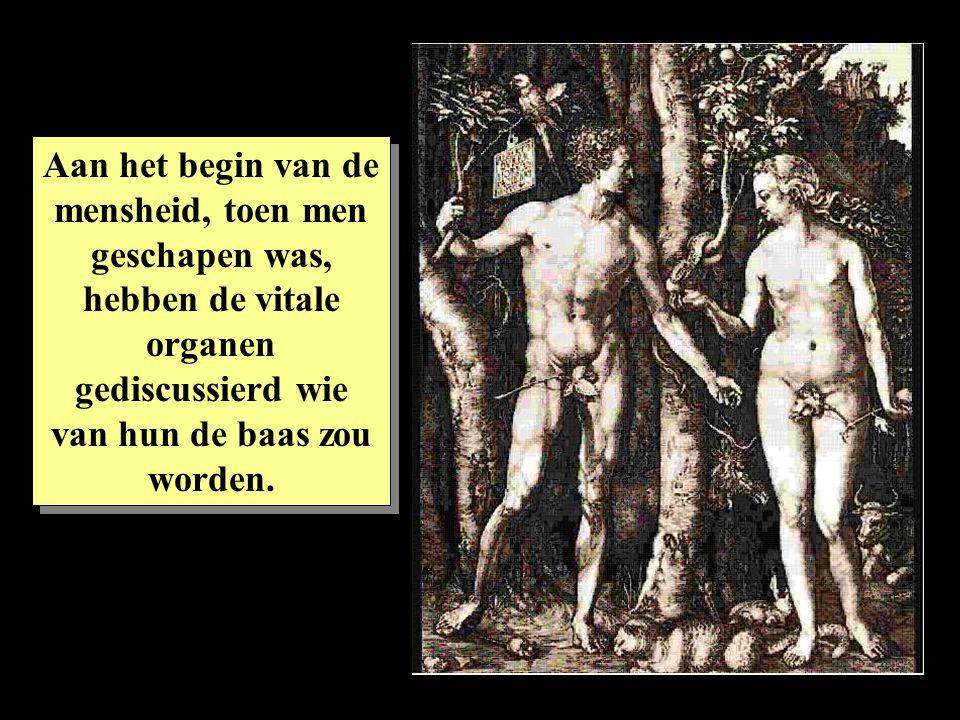 Aan het begin van de mensheid, toen men geschapen was, hebben de vitale organen gediscussierd wie van hun de baas zou worden.