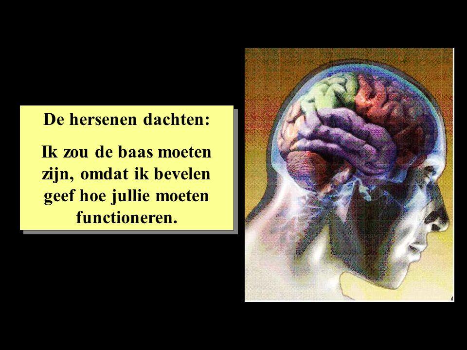 De hersenen dachten: Ik zou de baas moeten zijn, omdat ik bevelen geef hoe jullie moeten functioneren.