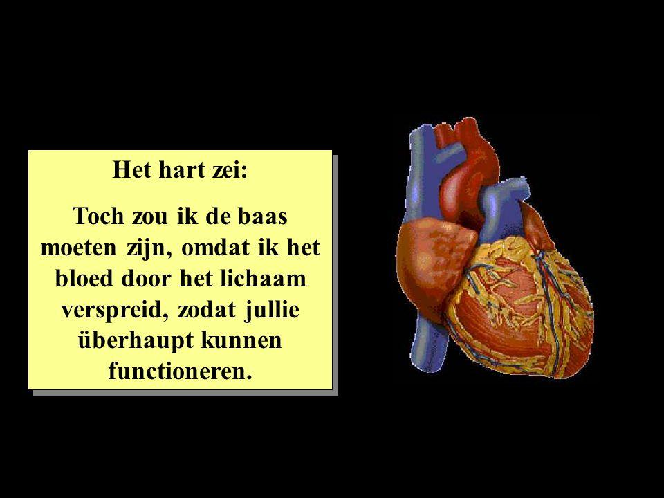 Het hart zei: Toch zou ik de baas moeten zijn, omdat ik het bloed door het lichaam verspreid, zodat jullie überhaupt kunnen functioneren.