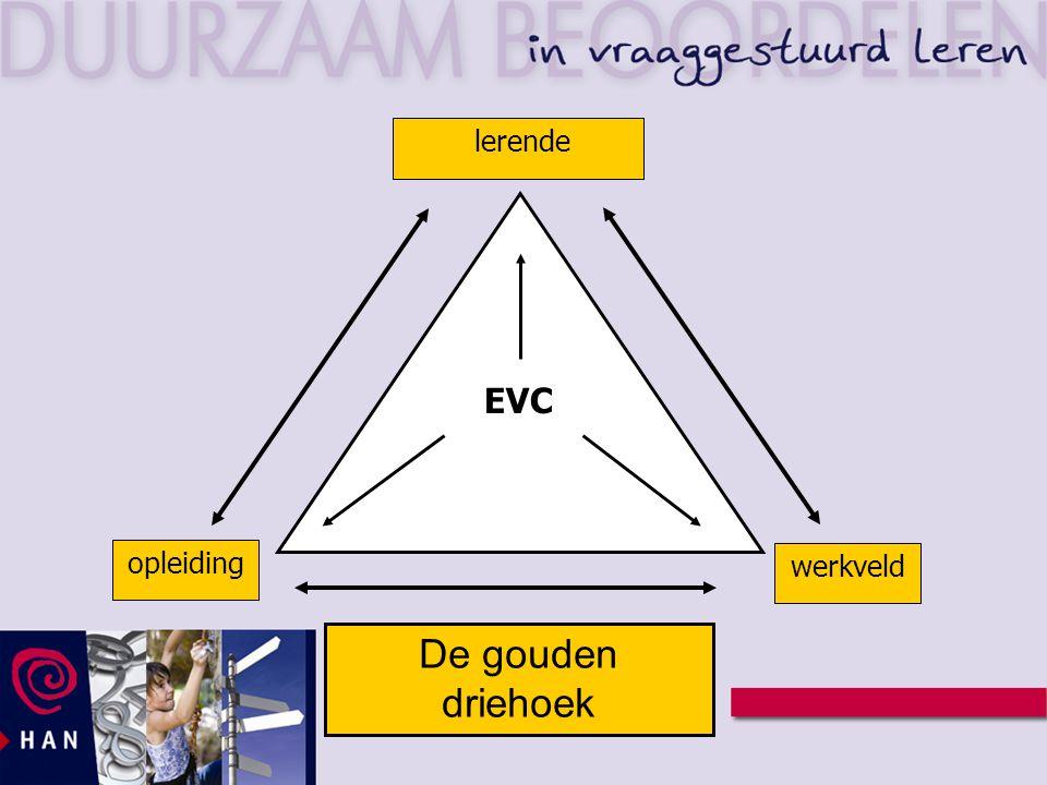 lerende EVC opleiding werkveld De gouden driehoek