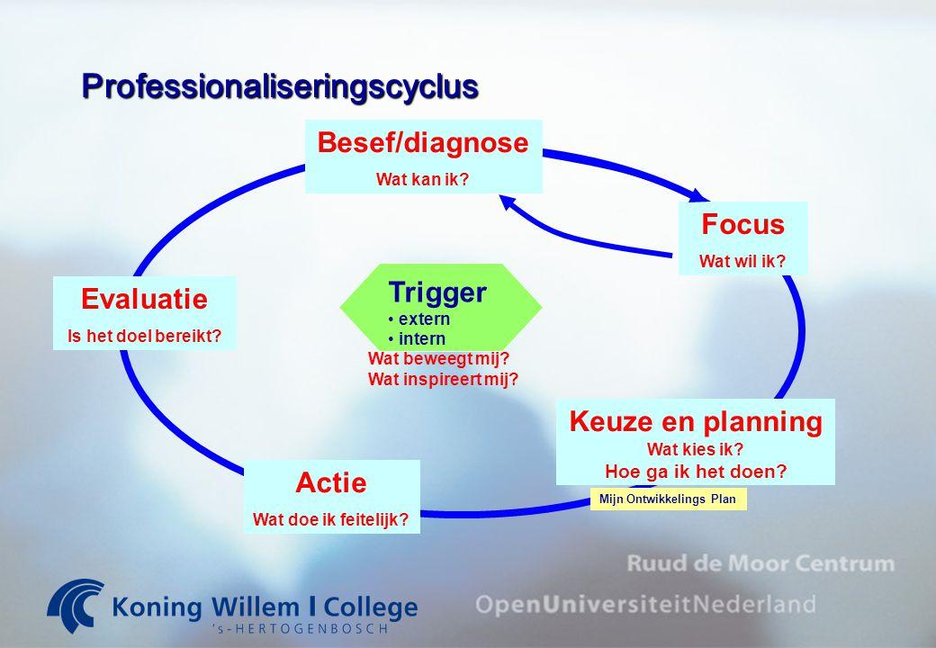 Professionaliseringscyclus
