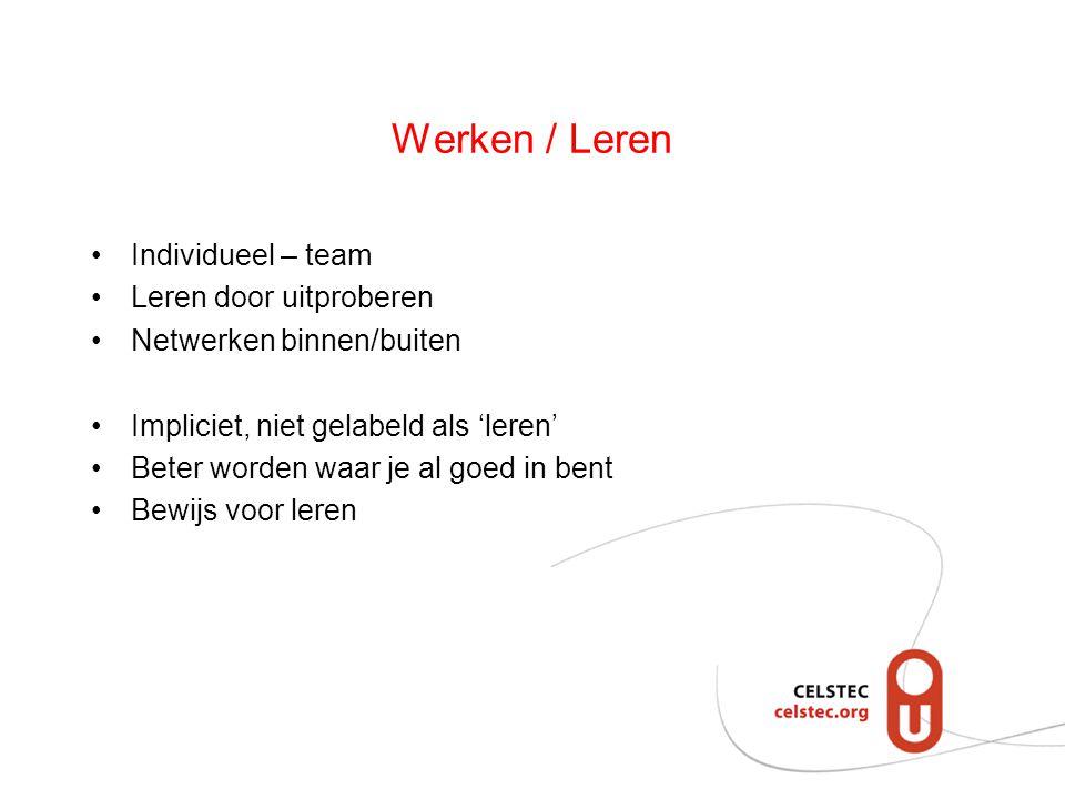 Werken / Leren Individueel – team Leren door uitproberen