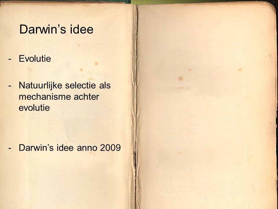 Darwin's idee Evolutie