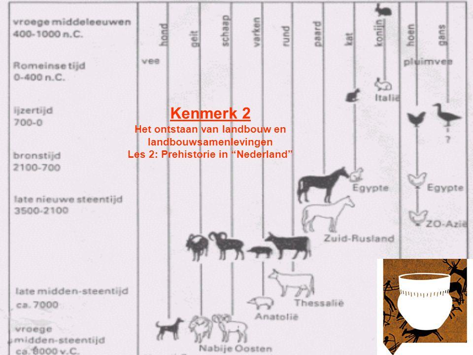 Kenmerk 2 Het ontstaan van landbouw en landbouwsamenlevingen Les 2: Prehistorie in Nederland
