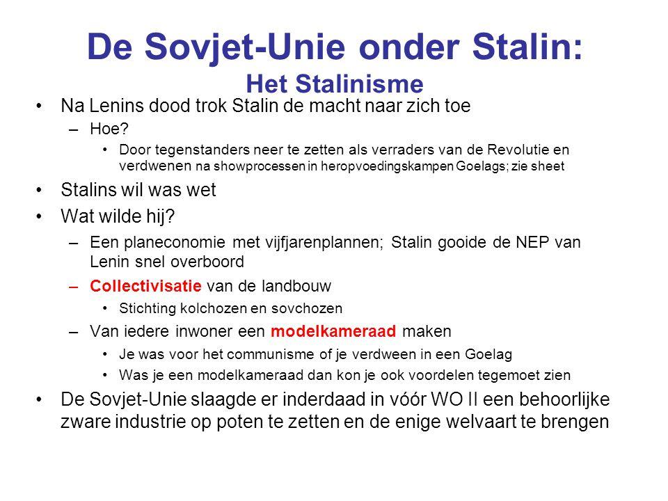 De Sovjet-Unie onder Stalin: Het Stalinisme