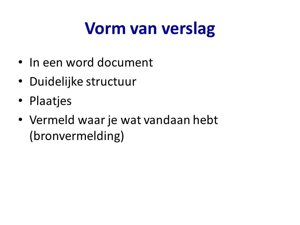 Vorm van verslag In een word document Duidelijke structuur Plaatjes