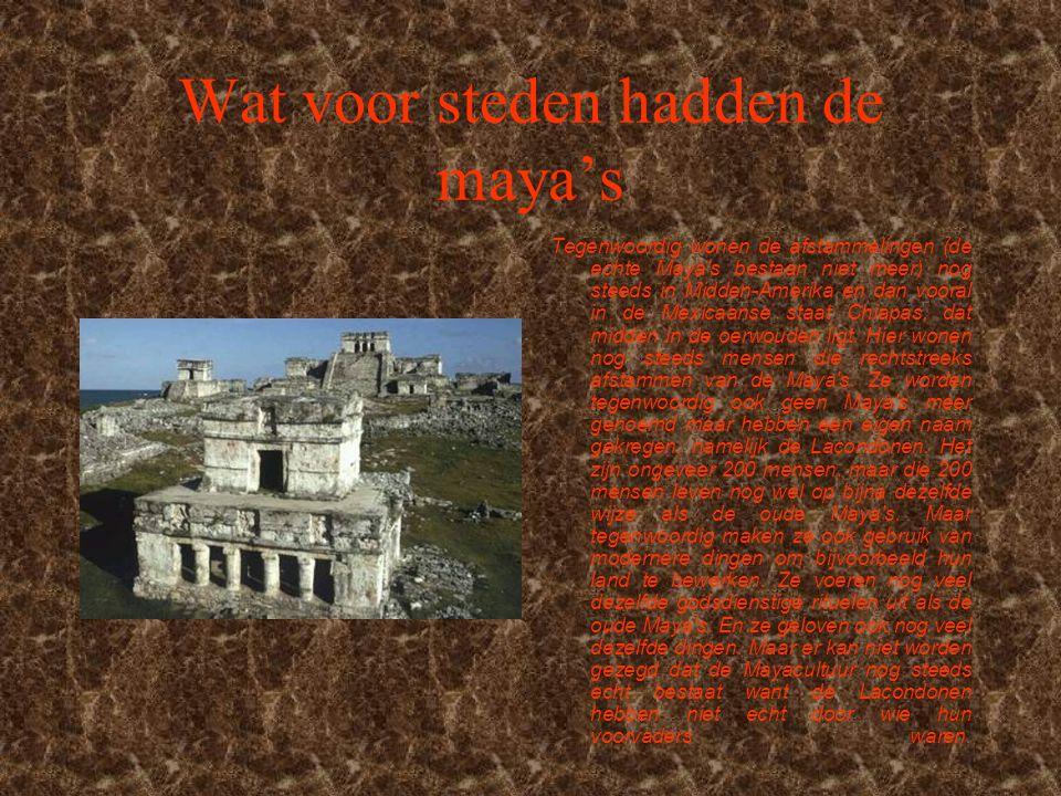 Wat voor steden hadden de maya's