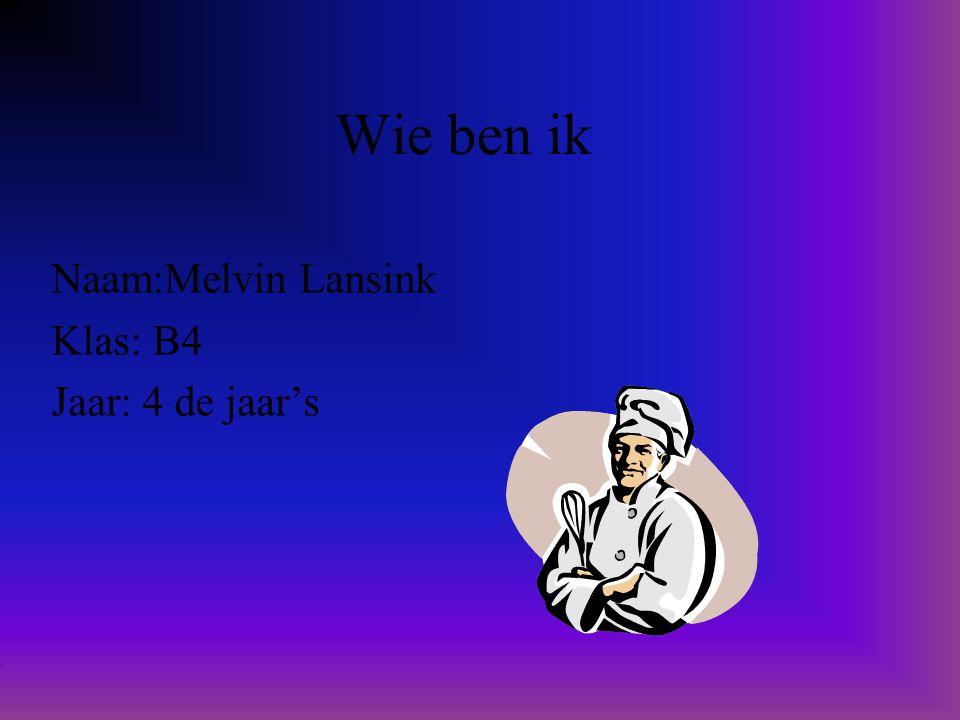 Naam:Melvin Lansink Klas: B4 Jaar: 4 de jaar's