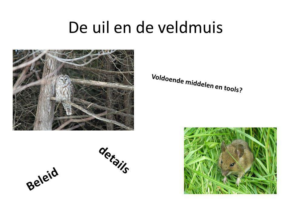 De uil en de veldmuis Voldoende middelen en tools details Beleid