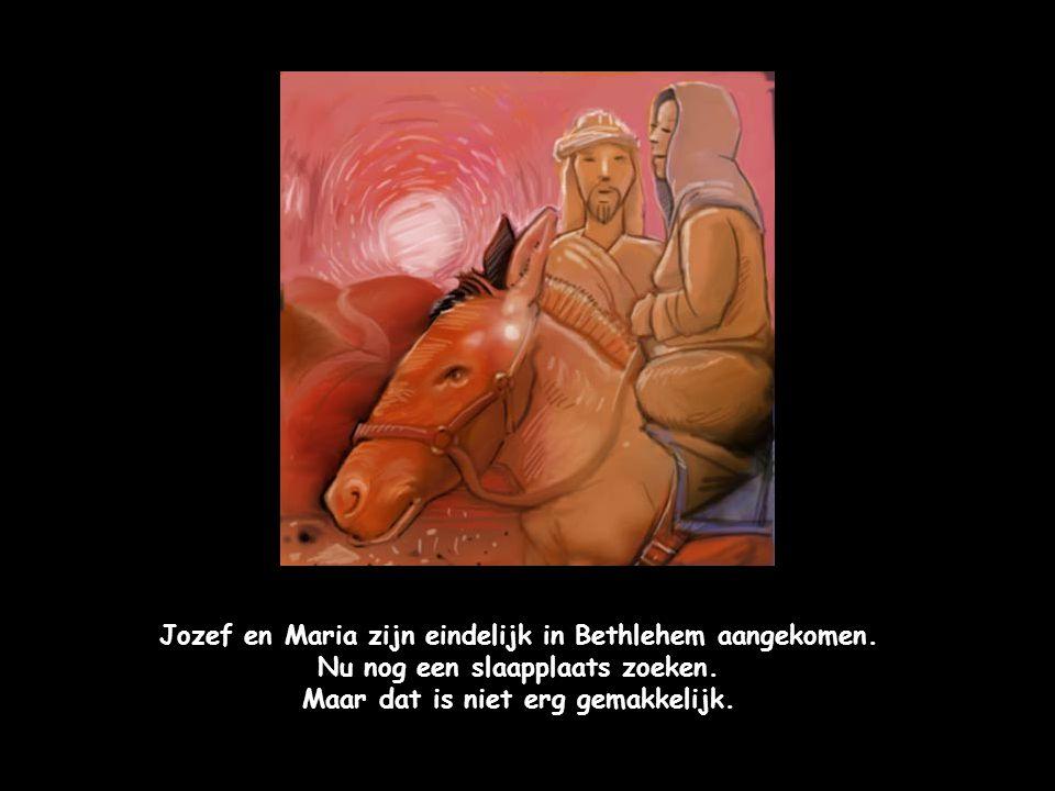 Jozef en Maria zijn eindelijk in Bethlehem aangekomen.