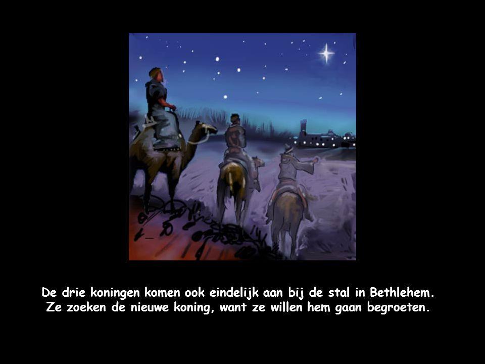 De drie koningen komen ook eindelijk aan bij de stal in Bethlehem.