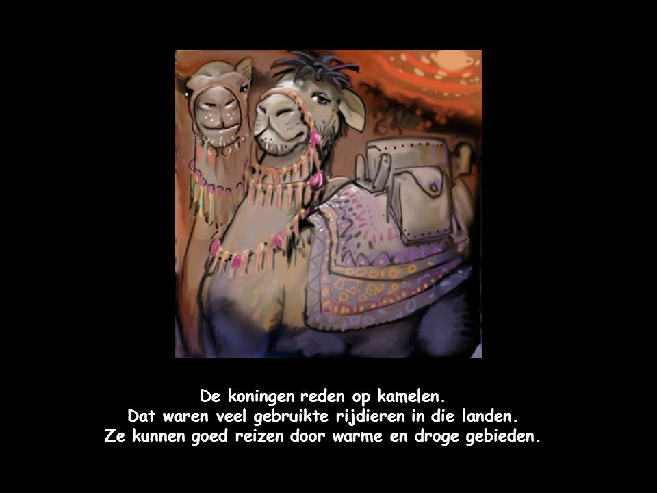 De koningen reden op kamelen.