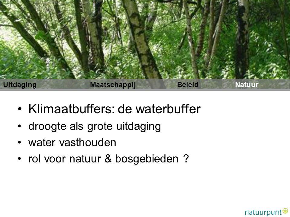 Klimaatbuffers: de waterbuffer