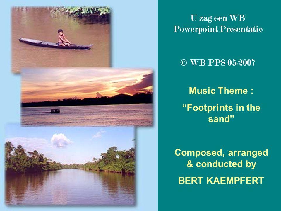 U zag een WB Powerpoint Presentatie