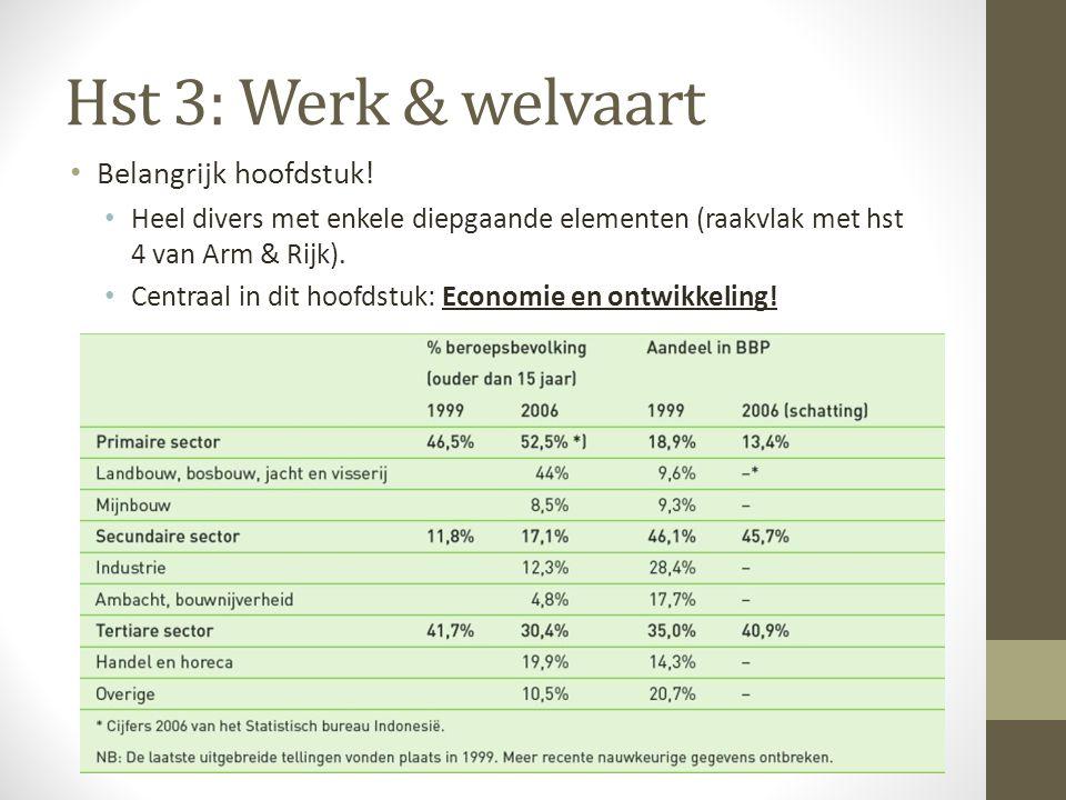 Hst 3: Werk & welvaart Belangrijk hoofdstuk!