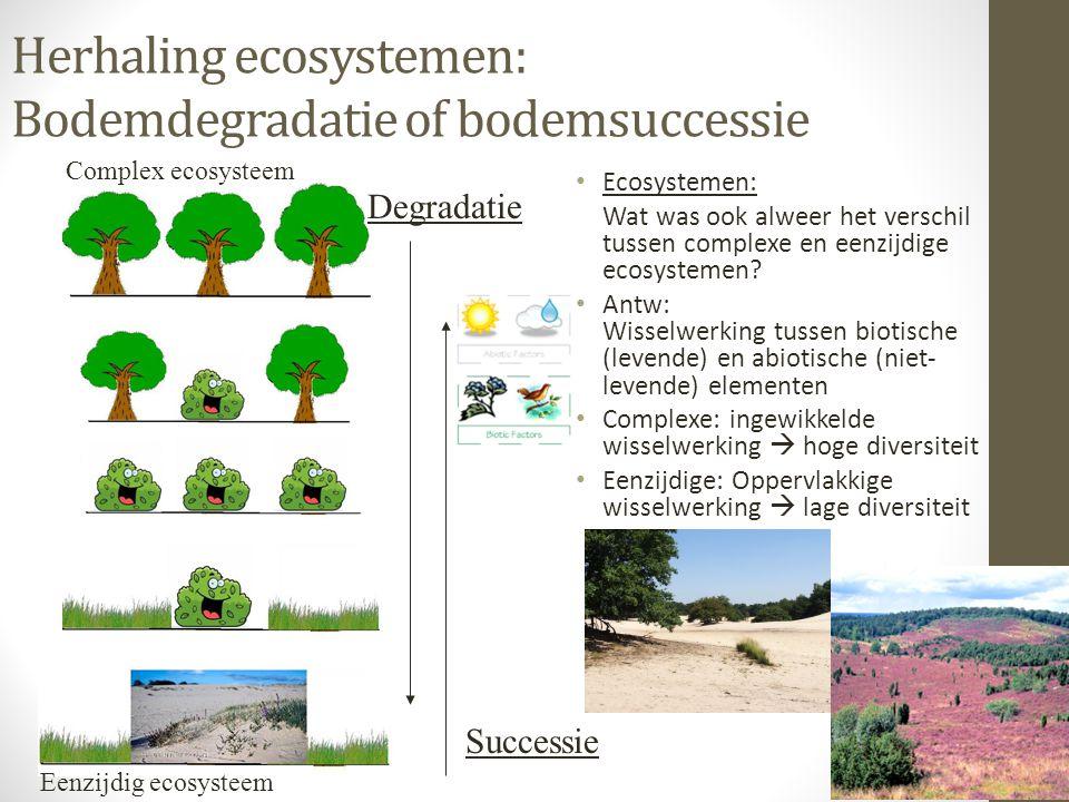 Herhaling ecosystemen: Bodemdegradatie of bodemsuccessie