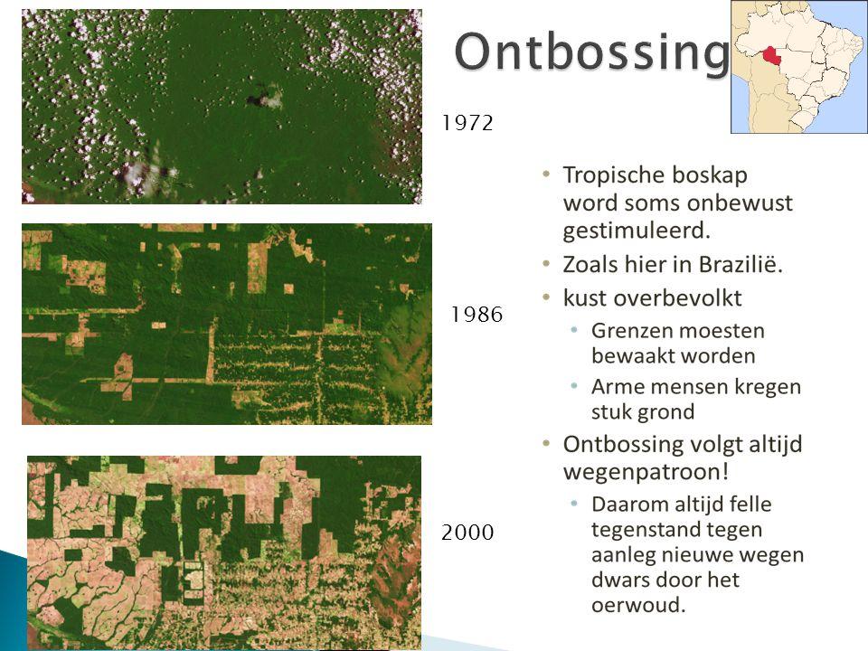 Ontbossing 1972 1986 2000