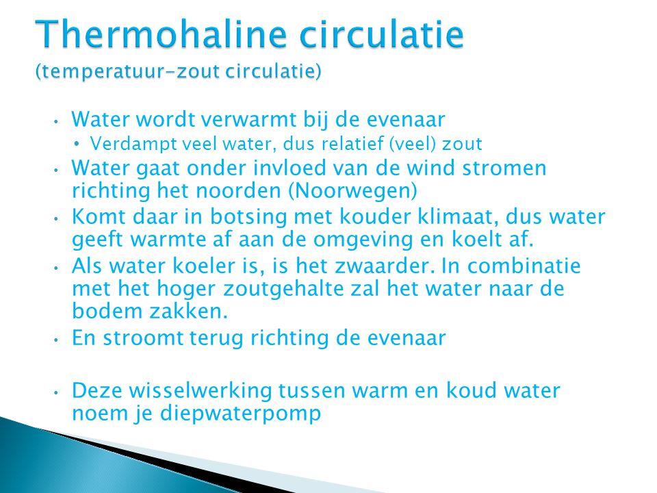 Thermohaline circulatie (temperatuur-zout circulatie)