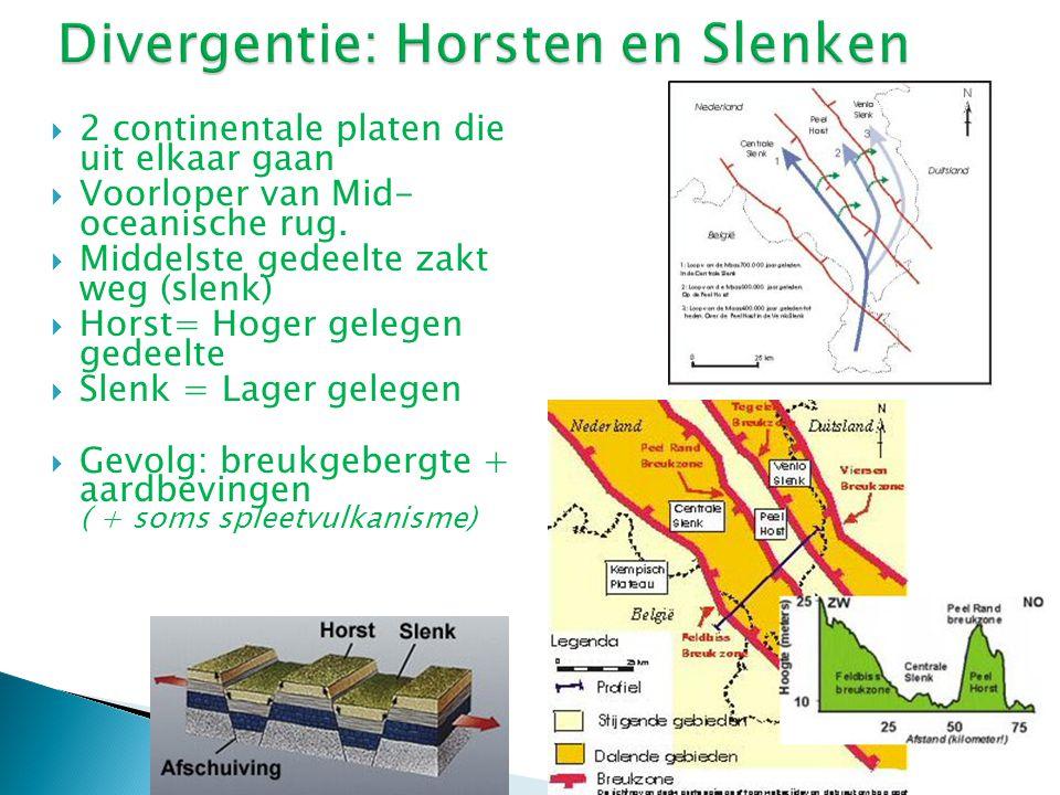 Divergentie: Horsten en Slenken