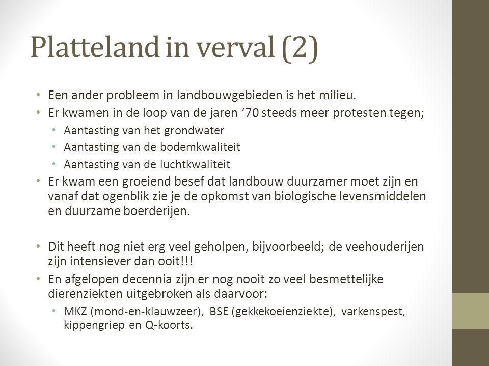 Platteland in verval (2)