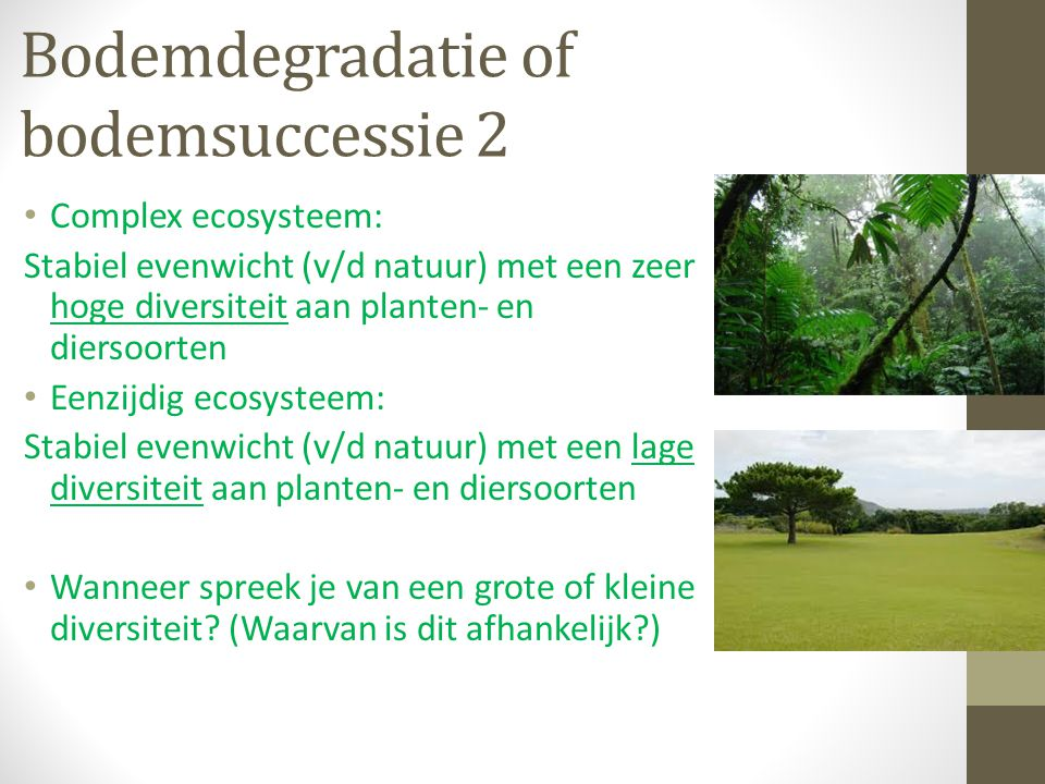 Bodemdegradatie of bodemsuccessie 2