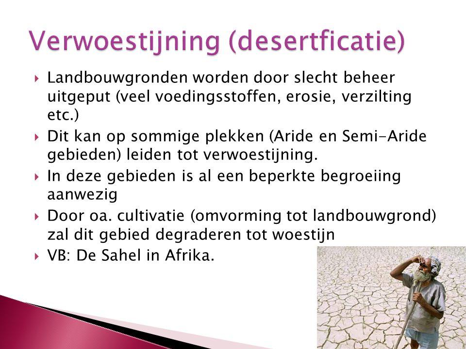 Verwoestijning (desertficatie)