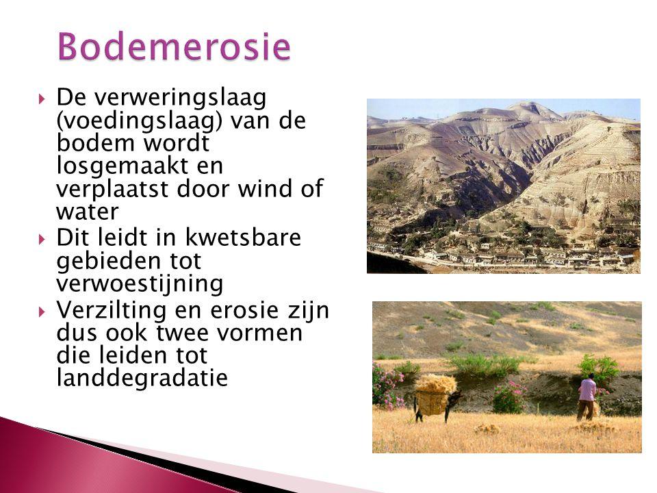 Bodemerosie De verweringslaag (voedingslaag) van de bodem wordt losgemaakt en verplaatst door wind of water.