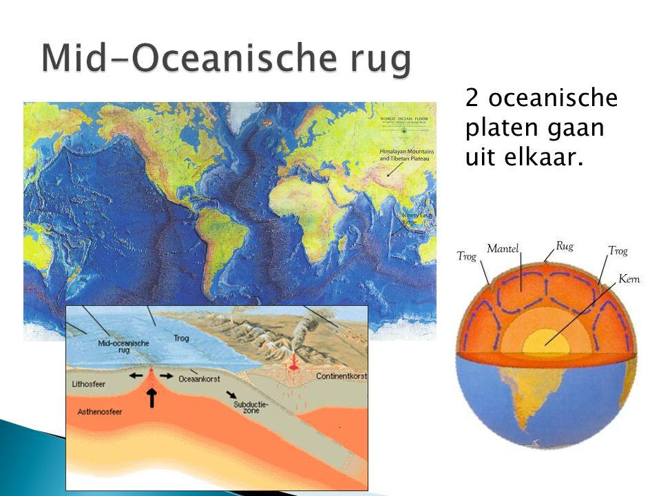 Mid-Oceanische rug 2 oceanische platen gaan uit elkaar.