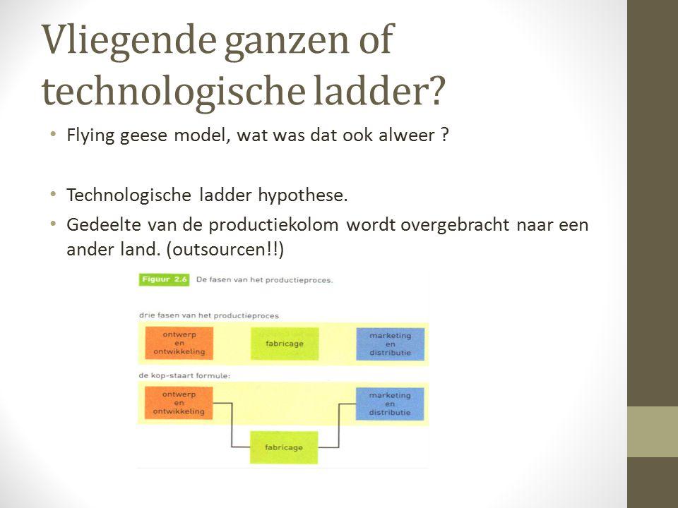 Vliegende ganzen of technologische ladder