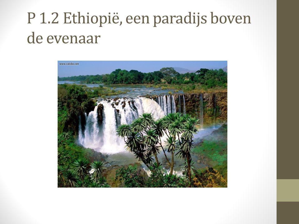 P 1.2 Ethiopië, een paradijs boven de evenaar