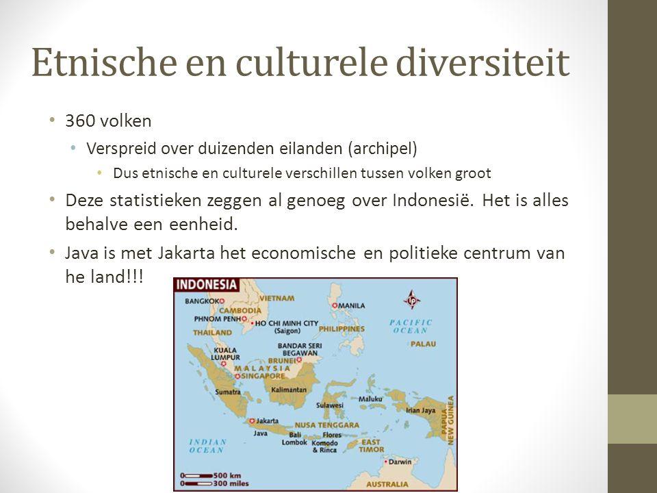 Etnische en culturele diversiteit