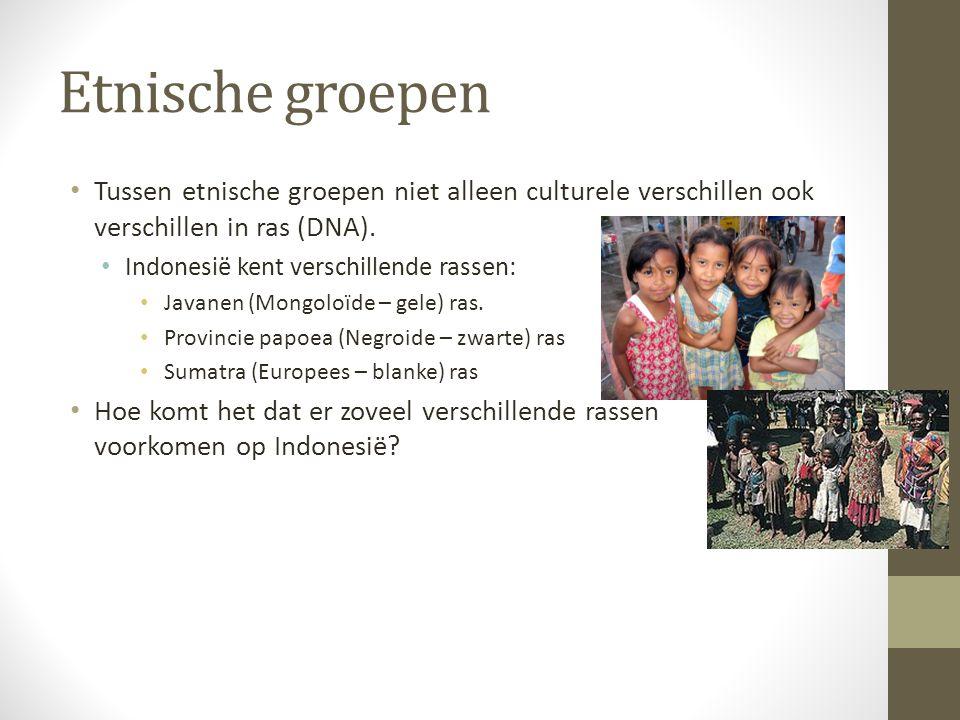Etnische groepen Tussen etnische groepen niet alleen culturele verschillen ook verschillen in ras (DNA).